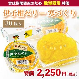 【数量限定】伊予柑ゼリー 寒づくり 155g×30個入