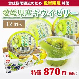 【数量限定】愛媛県産キウイゼリー 120g×12個入
