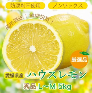 愛媛県産ハウスレモン LからM 5kg