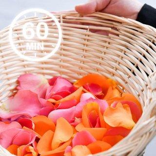 【家族の毎年恒例行事】メモリアルクルーズ (28Feet)
