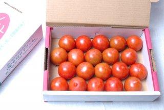 深層水トマト1.2�箱