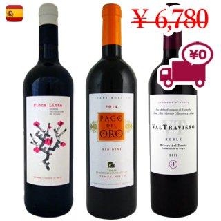 送料無料 SPECIAL PRICE<br>【スペインワイン3本セット】<br>3地域で構成された人気の赤ワイン3種