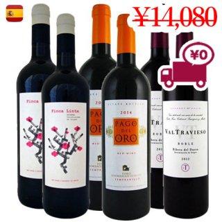 送料無料 SPECIAL PRICE<br>【スペインワイン6本セット】<br>3地域で構成された人気の赤ワイン3種 各2本
