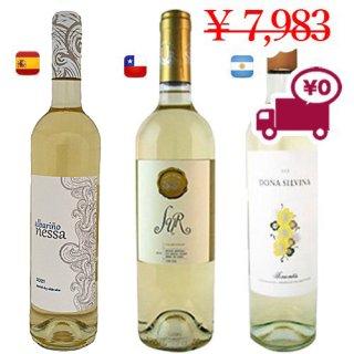 【限定特価】送料無料 SPECIAL PRICE<br>【3か国 白ワイン 3本セット】<br>チリ、スペイン、アルゼンチンから<br>非常に愛されている古典的な白ワイン3種類。