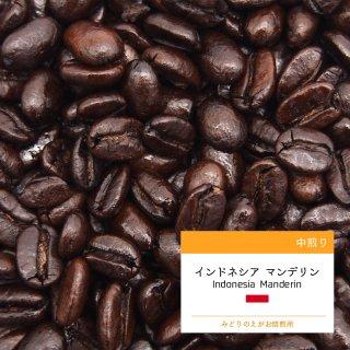 インドネシア マンデリン ミトラ 中煎り コーヒー豆 100g