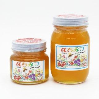 純粋はちみつ 日本ミツバチ百花蜜 国産 香川県産 300g