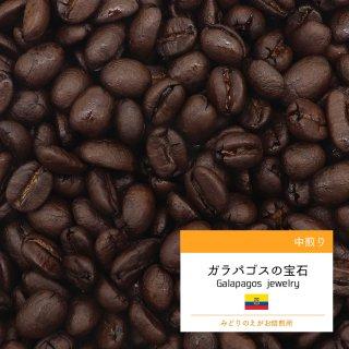 エクアドル ガラパゴスの宝石 中やや深煎り コーヒー豆 100g