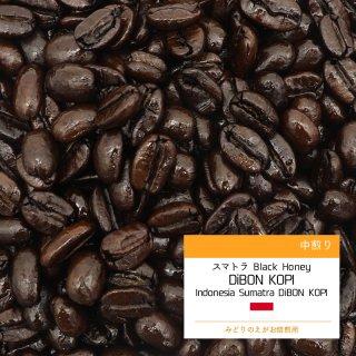 スマトラ DiBON KOPI ブラックハニー 中煎り コーヒー豆 100g
