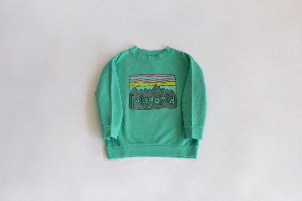 Patagonia(パタゴニア)Baby Lightweight Crew Sweatshirt(Fitz Roy Skies:Light Beryl)