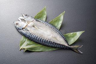 サバ魚醤干し