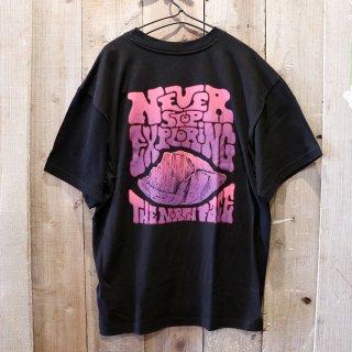 The North Face(ザ ノースフェイス):グラフィックTシャツ