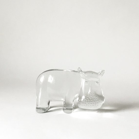 HIPPO-S in GLASS