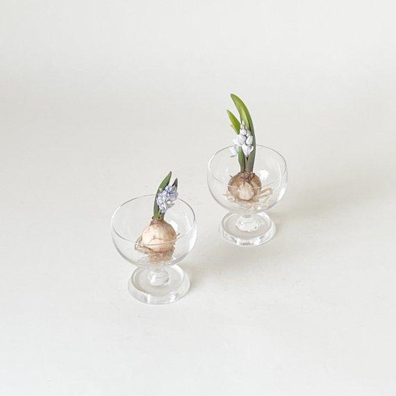 SEITSEMAN AURINKO STEM GLASS | mini