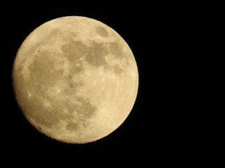 動画配信サービス マドモアゼル・愛特別セミナー「月のすべてを知る」 全5時間13分収録