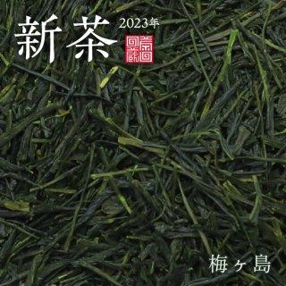 【新茶】梅ヶ島