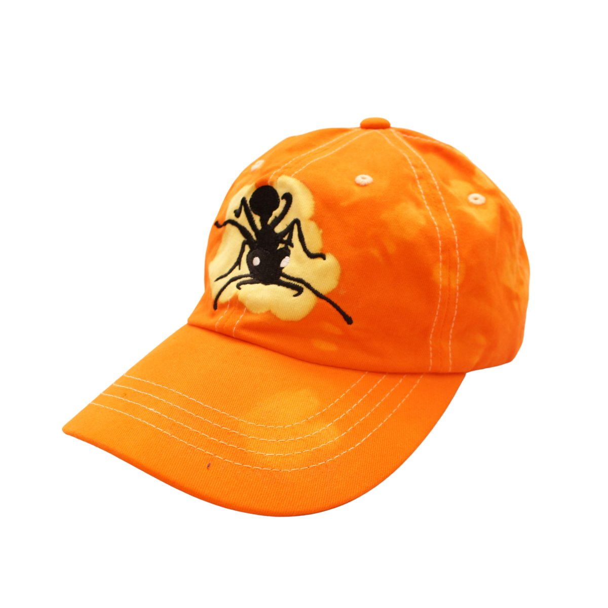 Big Ant x Hank Reavis Cap【Orange】