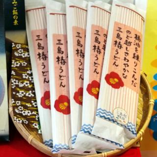 【送料無料】三島村 椿うどん【5袋セット】《三島村観光協会(みしま村)》