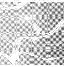 デリータースクリーン SE-616