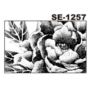 デリータースクリーン SE-1257