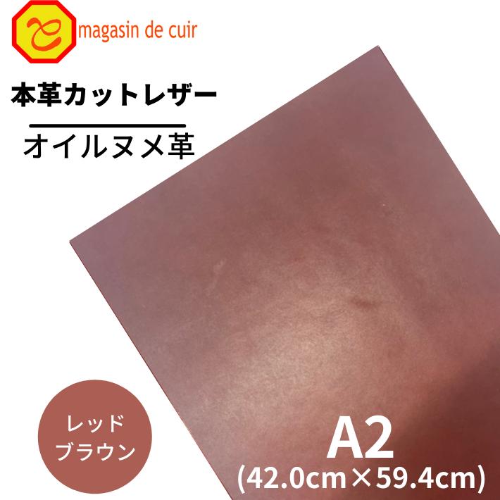 A2オイルヌメ(3503レッドブラウン)