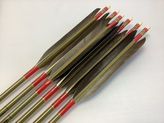 黒手羽 訳あり グリーンカーボン矢6本セット 76-20 赤色糸