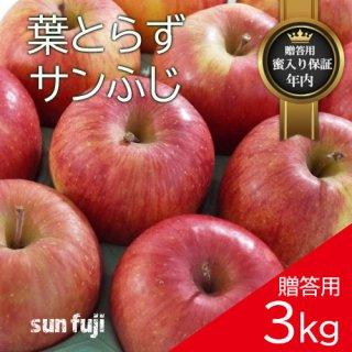 青森葉とらずりんご「サンふじ」贈答用3kg(約8〜11個)モールド詰め※12月初旬頃より発送予定