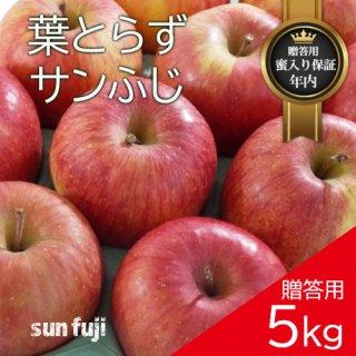 青森葉とらずりんご「サンふじ」贈答用5kg(約14〜18個)モールド詰め※12月初旬頃より発送予定