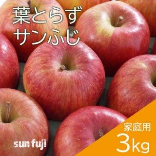 青森葉とらずりんご「サンふじ」家庭用3kg(約8〜11個)※12月初旬頃より発送予定