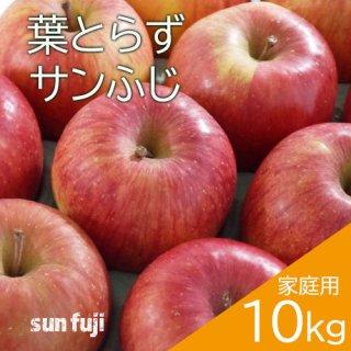 青森葉とらずりんご「サンふじ」家庭用10kg(約28〜40個)※12月初旬頃より発送予定
