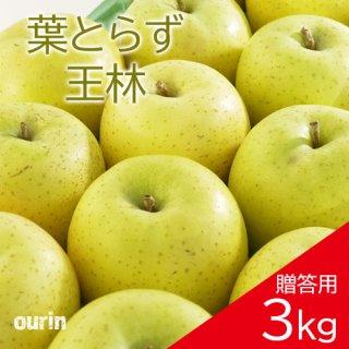 葉とらず「王林」贈答用3kg(約8〜11個)モールド詰め※11月中旬頃より発送予定