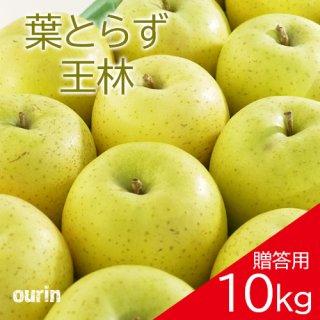 葉とらず「王林」贈答用10kg(約28〜36個)モールド詰め※11月中旬頃より発送予定