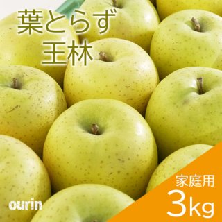 葉とらず「王林」家庭用3kg(約8〜11個)※11月中旬頃より発送予定