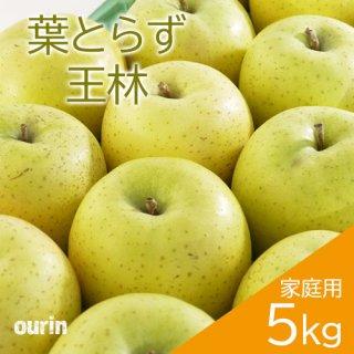 葉とらず「王林」家庭用5kg(約14〜20個)※11月中旬頃より発送予定