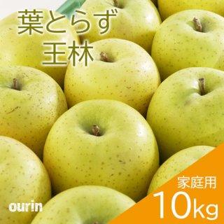 葉とらず「王林」家庭用10kg(約28〜40個)※11月中旬頃より発送予定