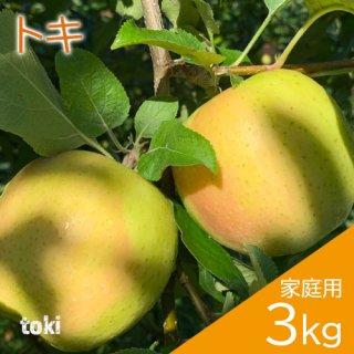青森りんご「トキ」家庭用3kg(約8〜12個)※10月初旬頃より発送予定