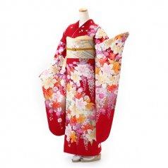 振袖 フルセット 花柄 Lサイズ 赤・ワイン系 (中古 リユース 美品) 16483