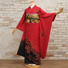 振袖 フルセット モダン柄 Mサイズ 赤・ワイン系 (中古 リユース 美品) 15041