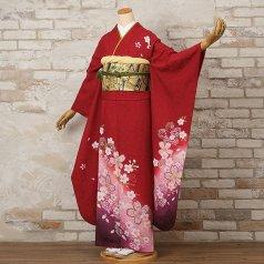振袖 フルセット 花柄 Lサイズ 赤・ワイン系 (中古 リユース 美品) 16174