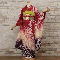 振袖 フルセット 花柄 Mサイズ 赤・ワイン系 (中古 リユース 美品) 16198
