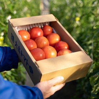 大島キッストマト 家庭用バラ詰め2kg箱入り