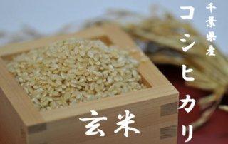 令和2年千葉県産コシヒカリ     玄米10kg