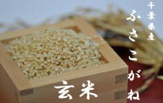 令和2年千葉県産ふさこがね     玄米10kg