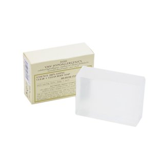 ESSENCE CLEAN BODY SOAP(エッセンス クリーンボディソープ)