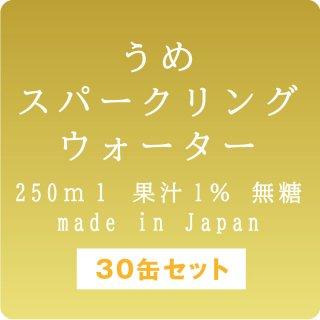 市価5400円【うめ-炭酸水-250ml】250ml×30缶セット