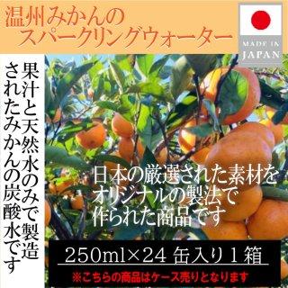 市価5400円【みかん-炭酸水-】250ml×30缶セット