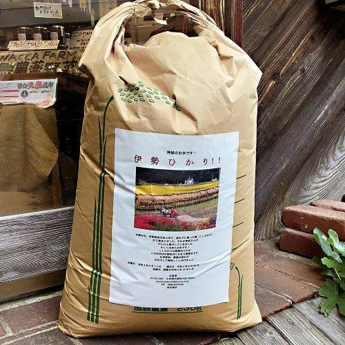 坂井さん(岡山) /  農薬不使用 天日干し米 いせひかり 令和3年度産