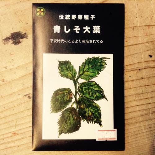 浜名農園 / 伝統野菜種子 青しそ大葉