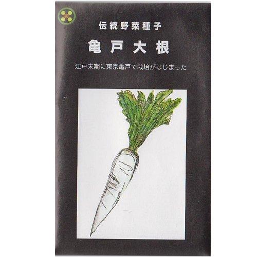 浜名農園 / 伝統野菜種子 亀戸大根