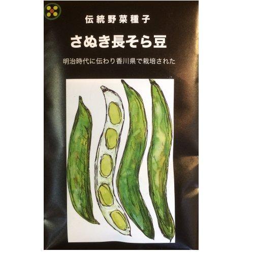 浜名農園 / 伝統野菜種子 さぬき長そら豆