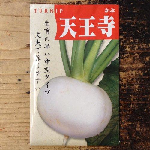 浜名農園 / 伝統野菜種子 天王寺かぶ